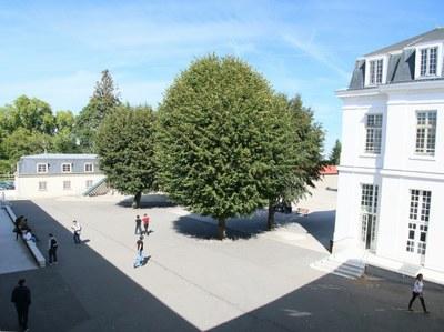 Cour du Lycée Général